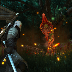 Geralt fighting one on promotional screenshot.