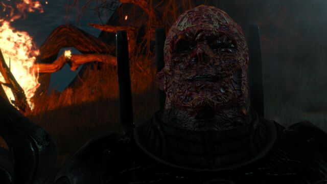 File:Imlerith face flesh melted.jpg