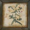 Decorative Painting botanical
