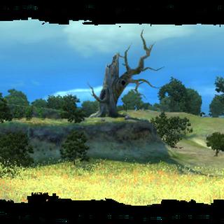 Drzewo wisielców