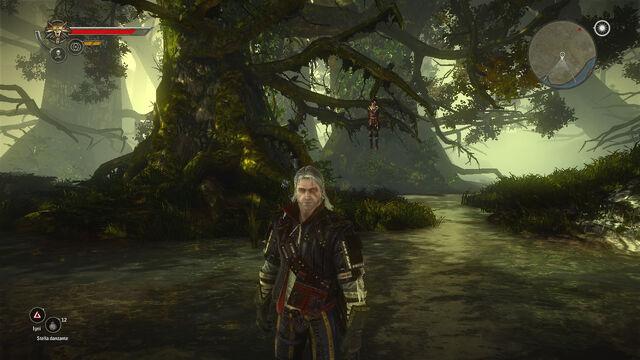 File:Tw2 swamp flotsam.jpg