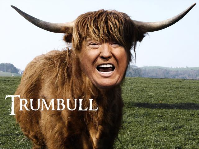 File:Trumbull.jpg