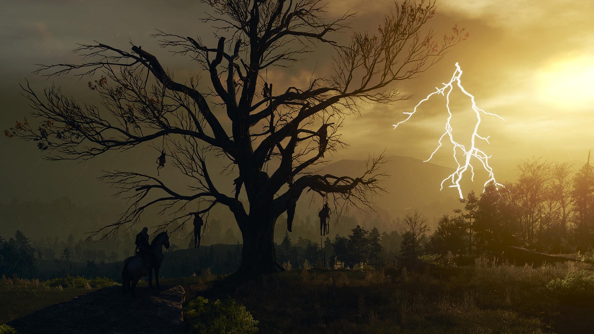 Hanged Man's Tree | Witcher Wiki | FANDOM powered by Wikia