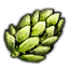 File:Substances Hop umbels.png