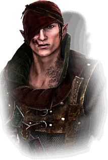 File:Tw2 journal Iorveth.png