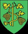 speculative Toussaint coat of arms - czech concept