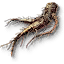 File:Tw3 allspice root.png