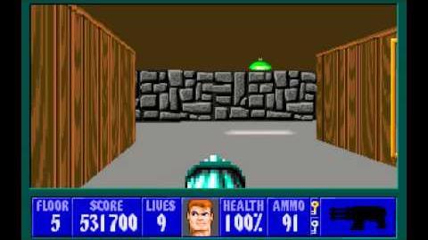 Wolfenstein 3D (id Software) (1992) Episode 6 - Confrontation - Floor 5 HD