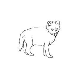 Wolfpupfemale
