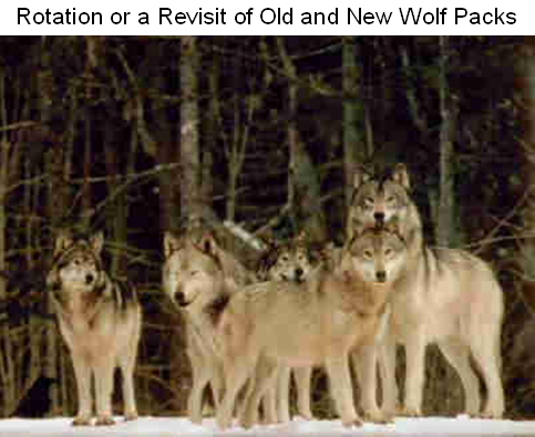 File:The pack.png