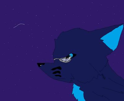 Cyren under the stars