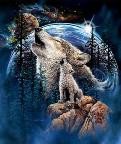 File:Cute wolf my fav.jpg