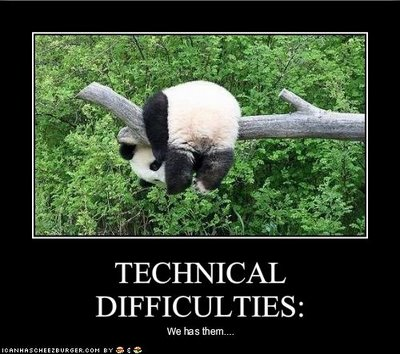 File:Funny-pictures-panda-has-technical-difficulties1.jpg