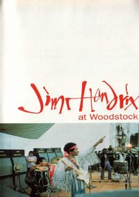 At Woodstock (vhs)