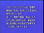 Japanese Warning Screen (1992)
