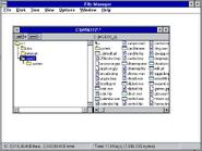 Windows31 filemanager
