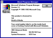 Windows31 about