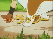 Lassie Anime