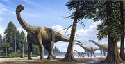 Titanosaurs forcetoknow.com
