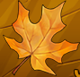 Collection-Maple Leaf