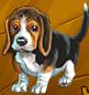Collection-Beagle