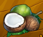 File:Collection-Coconut.png
