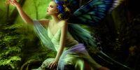 Aries Flutterwing