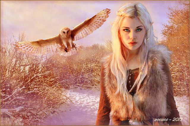 File:Nordic elf princess by zoozee-d5yuvrf.jpg