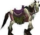 שלד-סוס