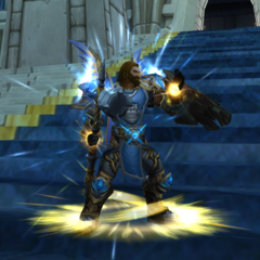The best paladin on /wowg/