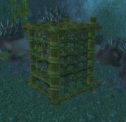 Shellfish Trap