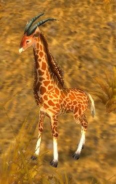 Image of Giraffe Calf