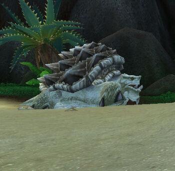 Ancient Island Turtle