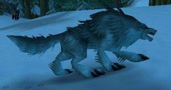 Snow Tracker Wolf