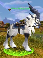 White Riding Talbuk