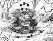 Pandaren2