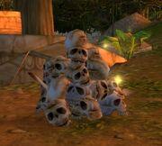 Zul'Mamwe Trophy Skulls