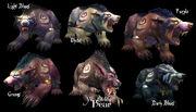 Nightelf-Bearforms.jpg