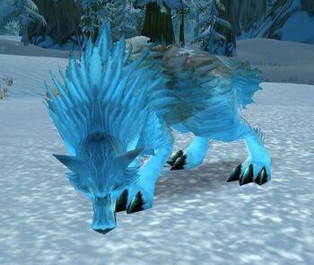 Ragged Timber Wolf