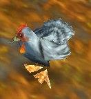 Image of Szechuan Chicken