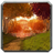 Achievement zone eversongwoods