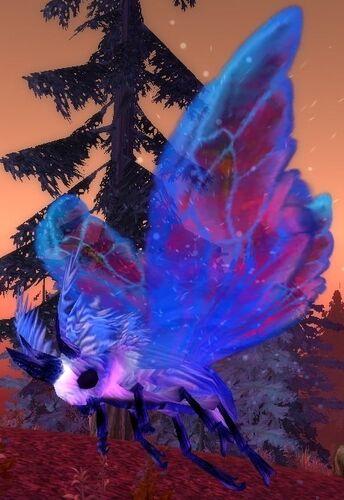 Royal Blue Flutterer