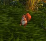 SquirrelWP
