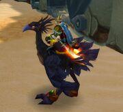 Black Hawkstrider