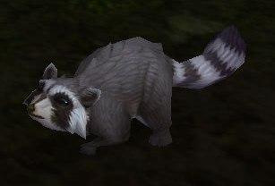 Image of Shy Bandicoon