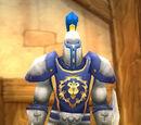 Stormwind City Guard (NPC)