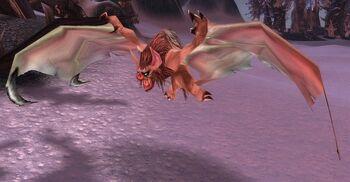 Zul'Drak Bat