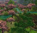 Arboretum (Jade Forest)