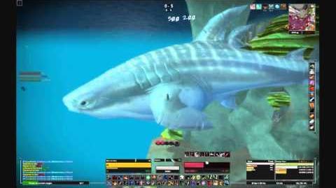 Jane Doe vs The Whale Shark