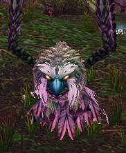 Strigid Owl